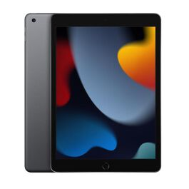iPad 9° Generazione