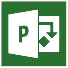 Office Project Professional 2019